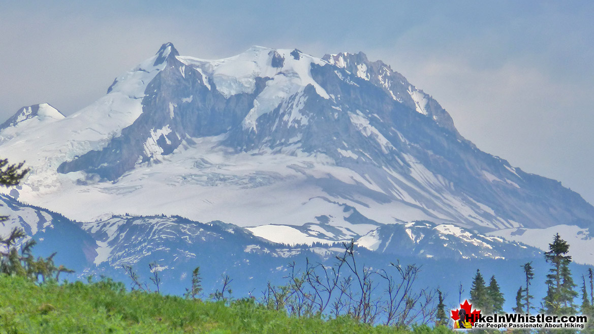 Mount Garibaldi from Brandywine Meadows