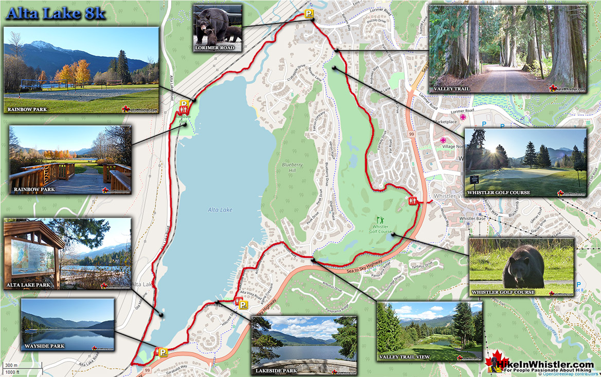 Alta Lake 8k Run in Whistler Map