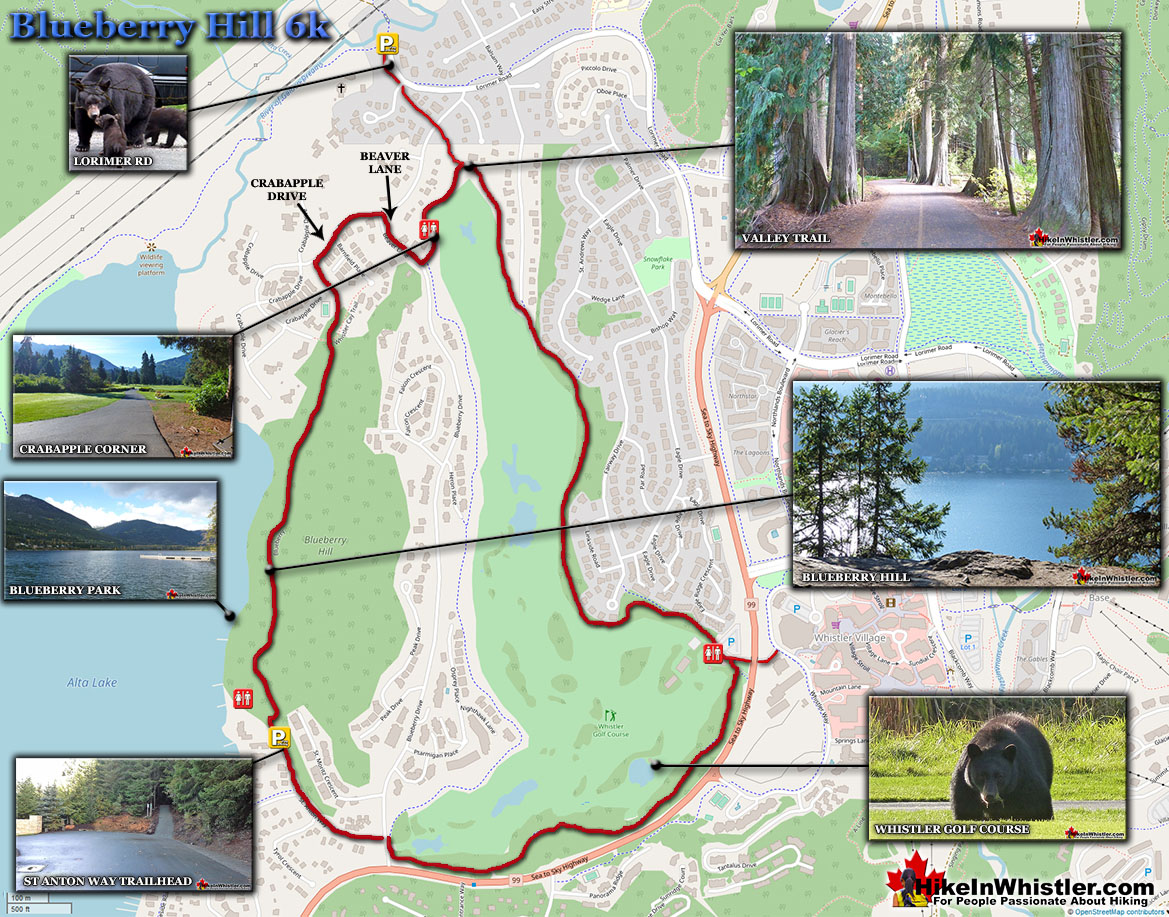 Blueberry Hill Whistler Running Map
