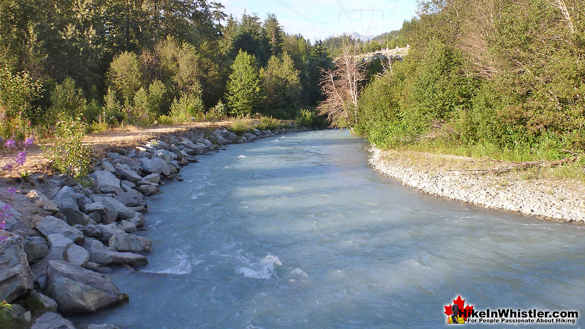 Fitzsimmons Creek 9k Run in Whistler