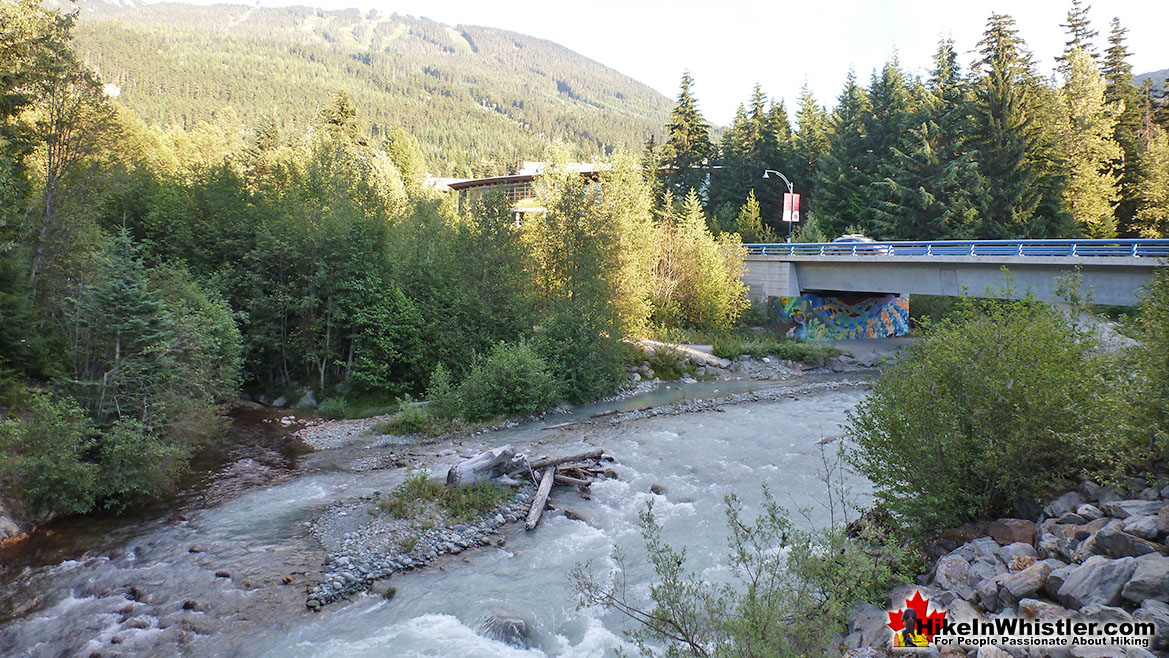 Fitzsimmons 9k Run in Whistler