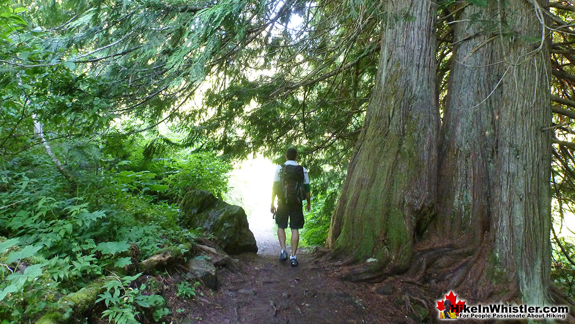 The Cheakamus Lake Trail - Garibaldi Park, Whistler