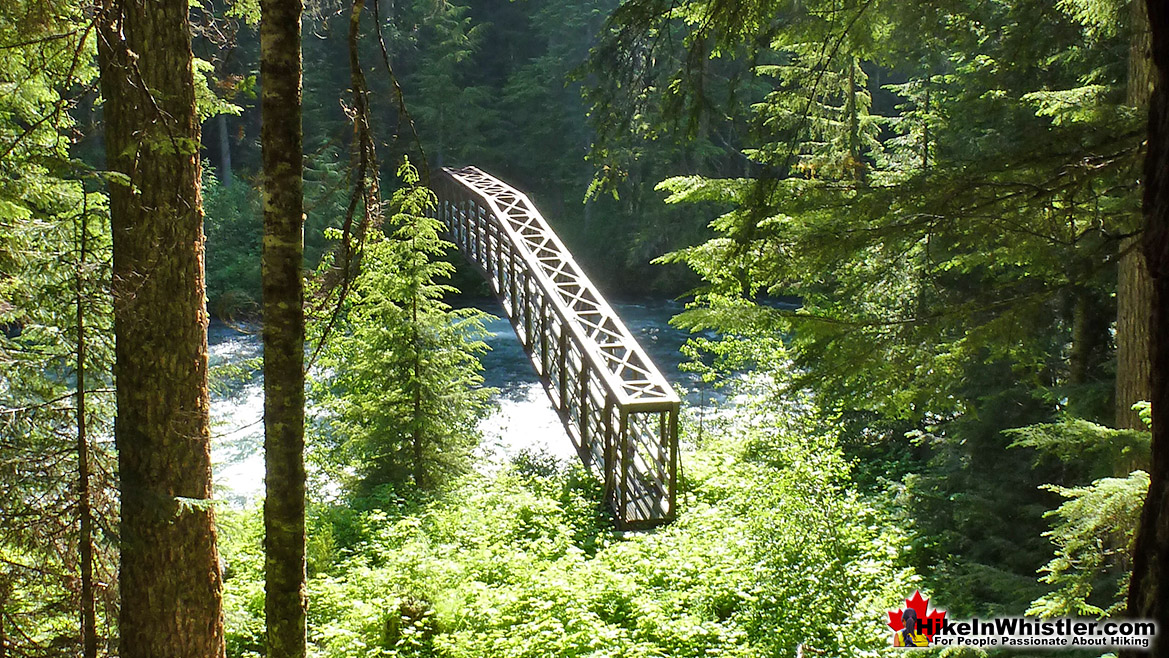 Bridge to Helm Creek along the Cheakamus Lake trail