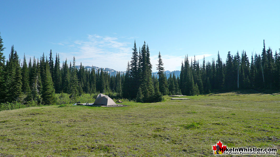 Helm Creek Campsite 9
