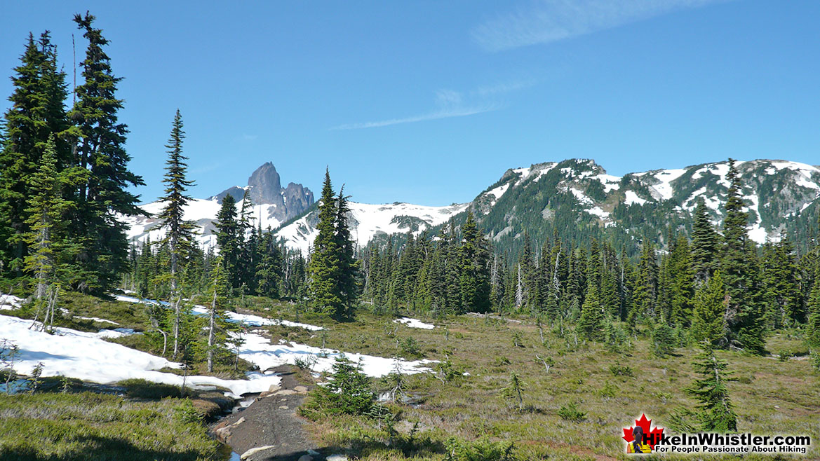 Helm Creek Trail to Black Tusk