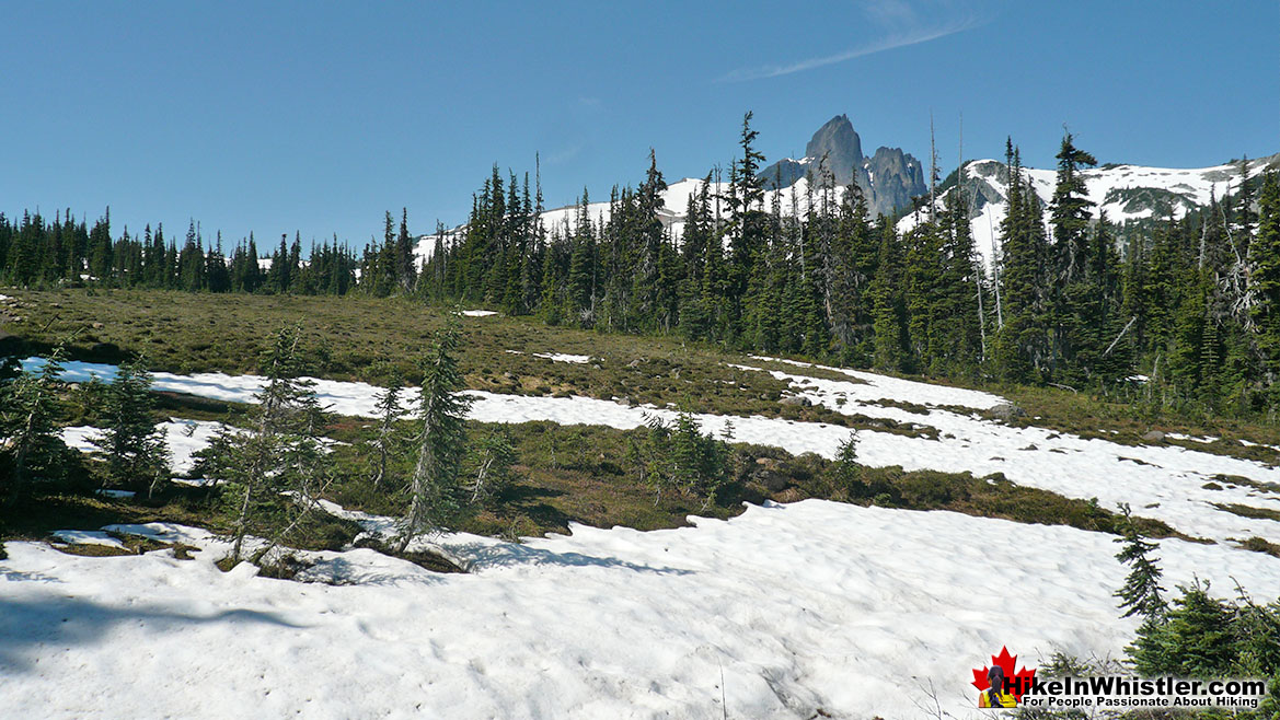 Helm Creek Trail to Black Tusk 3