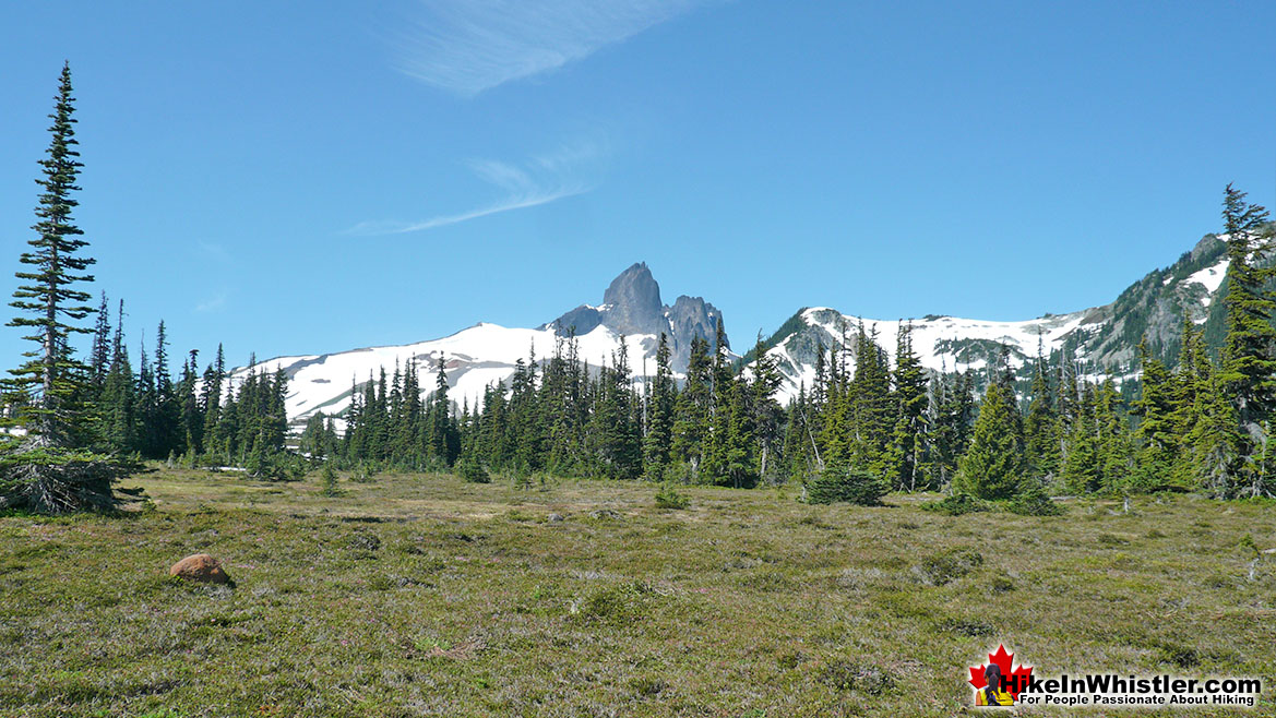 Helm Creek Trail to Black Tusk 4