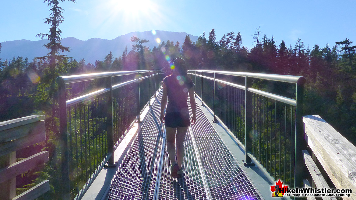 Sea to Sky Trail - More Hiking Near Cheakamus Lake
