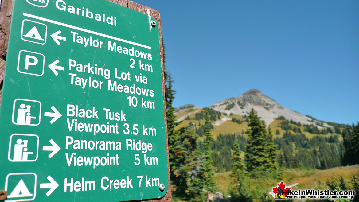 Taylor Meadows Trail Sign